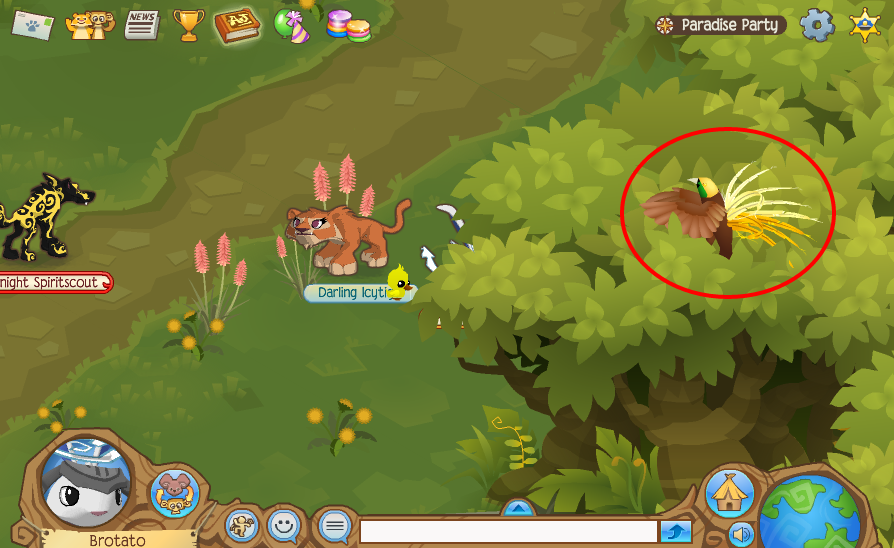 Animal Jam - Birds of Paradise Journey Book Locations | ourGemCodes